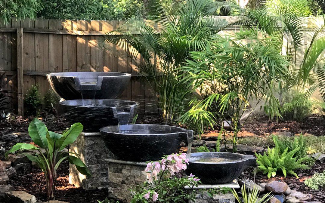 Palm Harbor Backyard Transformation