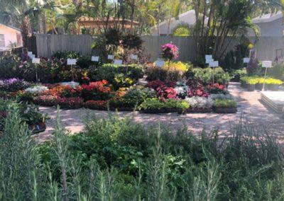 terranova-outdoor-living-nursery8